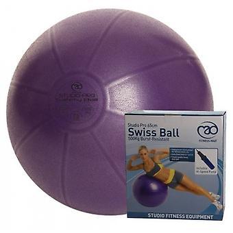 Fitness-Mad Studio Pro 500kg purskeenesteinen sveitsiläinen pallo ja pumppu 55cm