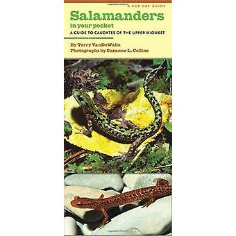 Salamanders in Your Pocket - A Guide to Caudates of the Upper Midwest