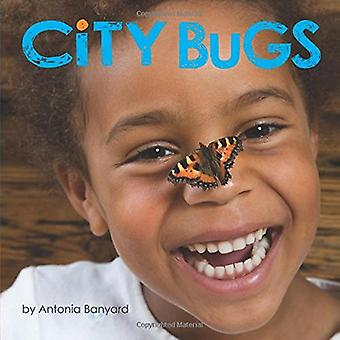 City Bugs by Antonia Banyard - 9781773210698 Book