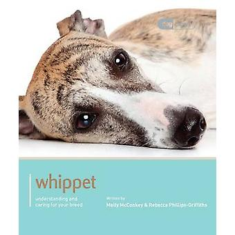 Whippet - Dog Expert by Molly McConkey - Rebecca Phillips-Griffiths -