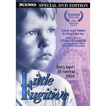 Lite flyktiga [DVD] USA import