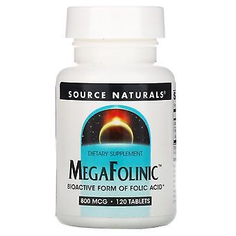 Source Naturals, MegaFolinic, 800 mcg, 120 Tablets