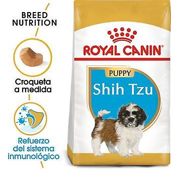 Royal Canin  Shih Tzu Puppy Pienso para Cachorro de Raza (Perros , Comida , Pienso)