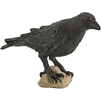 Fourmis fermes ltd corbeau miniature