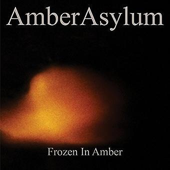 Amber Asylum - Frozen in Amber [CD] USA import