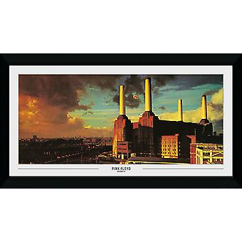 Pink Floyd animaux Collector imprimer 50x100cm