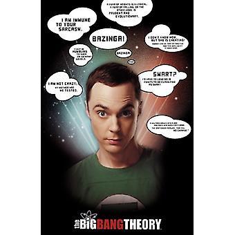 Big Bang Theory - Sheldon Cooper Zitate Poster drucken