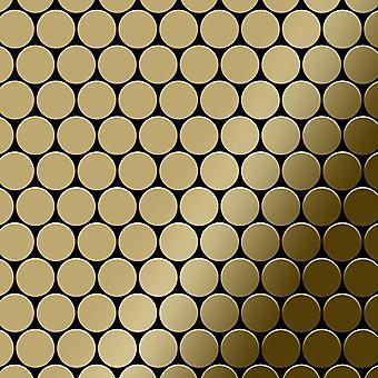 Metal mosaic Titanium ALLOY Dollar-Ti-GM