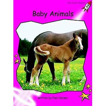Baby djur: Emergent (röd raket läsare: facklitteratur uppsättning B)