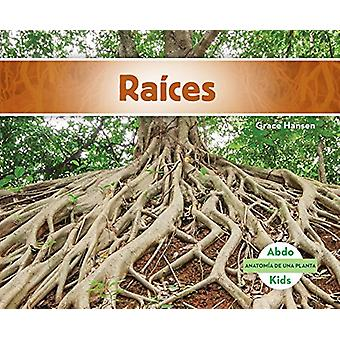 Raíces (Roots) by Grace Hansen - 9781624026607 Book