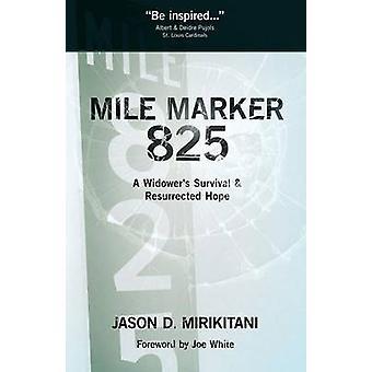Mile Marker 825 by Mirikitani & Jason