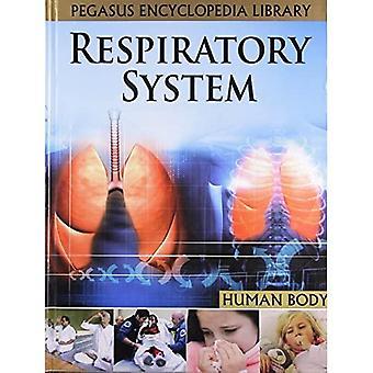 Respiratory Systemhuman Body