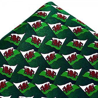 Ties Planet Wales Flag Silk Batista