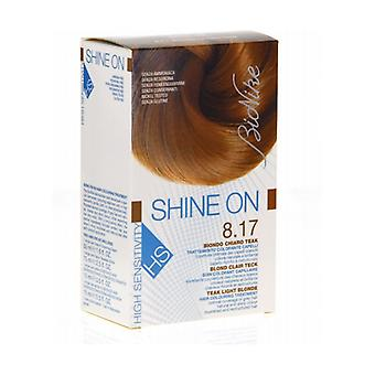 Shine On HS 8.17 Light Blonde Teak Hair Coloring Treatment 1 unit