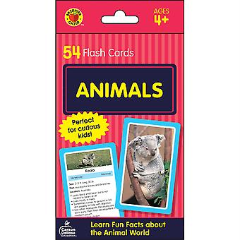 Carte Flash animali