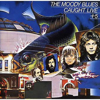 Moody Blues - Caught Live Plus 5 [CD] USA import