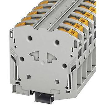 Phoenix Contact PTPOWER 95 3260100 jatkuvuus lukumäärä nastat: 2 25 mm² 95 mm² harmaa 1 PCs()