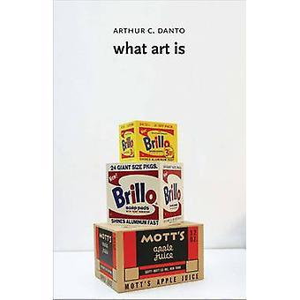 Mitä taide on Arthur C. Danto - 9780300205718 kirja
