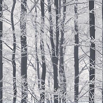 Woodland tapet træer vinter skov Glitter gnistre hvid grå sort sølv