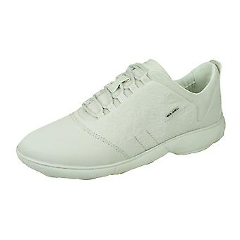 Geox D nébuleuse A Womens Lace Up baskets/chaussures-blanc cassé