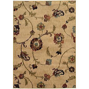 Hudson 4887b tan/multi indoor area rug rectangle 5'3