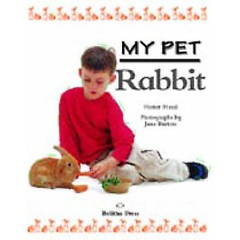 My Pet Rabbit by Honor Head - 9781841383576 Book