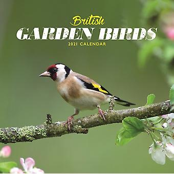 British Garden Birds Mini Square Wall Calendar 2021