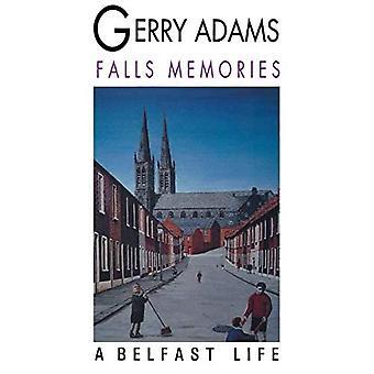 Putoavat muistot: Belfastin elämä