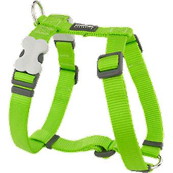 Red Dingo Harness One Touch Smooth Lime (Dogs , Collars, Leads and Harnesses , Harnesses)