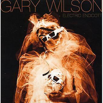 Gary Wilson - Electric Endicott [CD] USA import