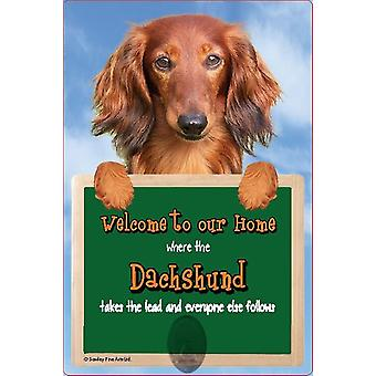 Scottish Collectables Long Haired Dachshund 3D Lead Hanger Wall Plaque