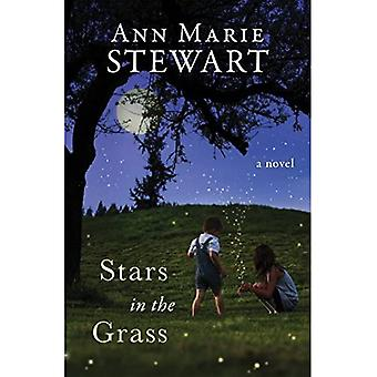 Stars in the Grass