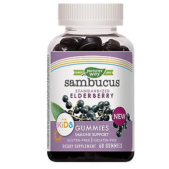 Nature's Way Sambucus Kids Gummies, 60 Gummies