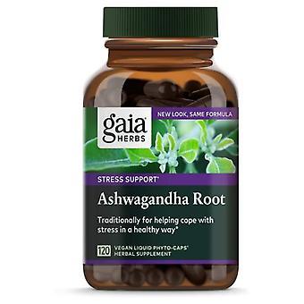 Gaia Yrtit Ashwagandha Root, 60 Korkkia