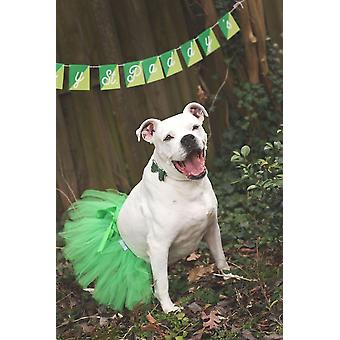 Green Christmas Dog Tutu Skirt | Xs-xxxl