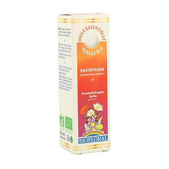 Ravintsara Essential Pearls 240 softgels of 20ml
