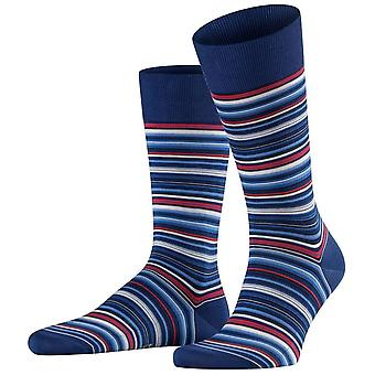 Falke Microblock Striped Socks - Royal Blue