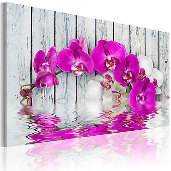Quadro - equilíbrio : orquídea