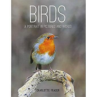 Oiseaux: Un Portrait en images et en mots