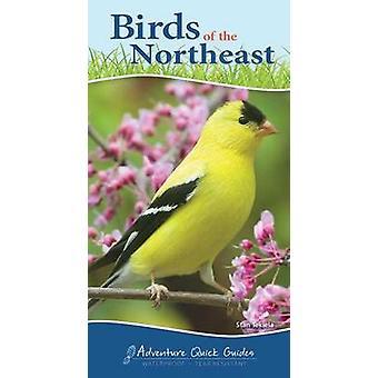 Birds of the Northeast Quick Guide by Stan Tekiela - 9781591934073 Bo