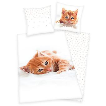 Kätzchen einzelne Baumwolle Bettbezug und Kissenbezug Set - europäische Größe