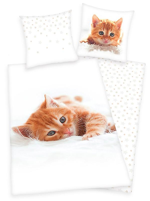 Kitten Single Cotton Duvet Cover and Pillowcase Set