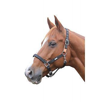 Roma Breakaway Pony/horse Headcollar
