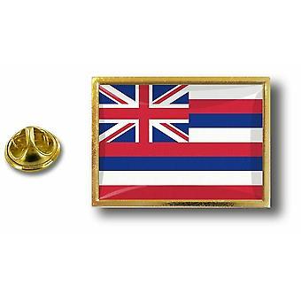 باين بينس شارة دبوس أبوس؛ معدن مع فراشة فرشاة العلم الولايات المتحدة الأمريكية هاواي