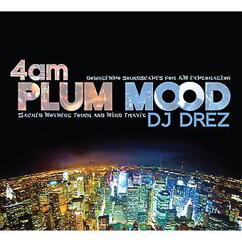 DJ zerd - 04:00: importation USA prune humeur [CD]