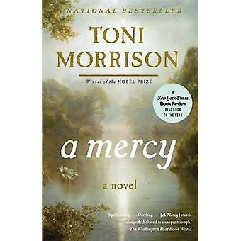 A Mercy by Toni Morrison - 9780307276766 Book