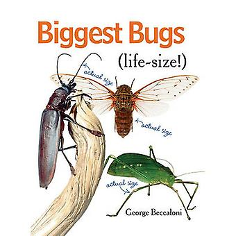 Biggest Bugs Life-Size by George Beccaloni - 9781554076994 Book