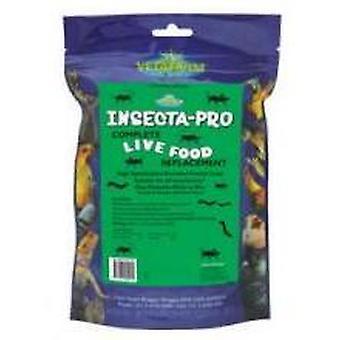 Hyönteiset Insecta Pro 2kg Vetafarm