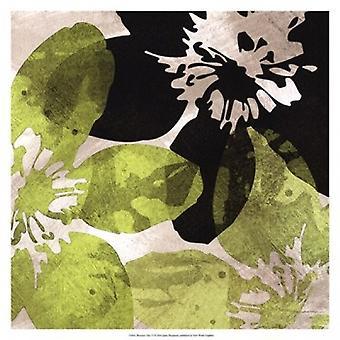 Bloomer plattor VI affisch Skriv av James Burghardt (17 x 17)