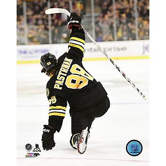 David Pastrnak 2014-15 Action Photo Print